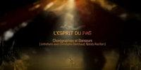 Mylène Farmer - L'esprit du pas - Tour 2009 Bonus Vidéo Stade de France